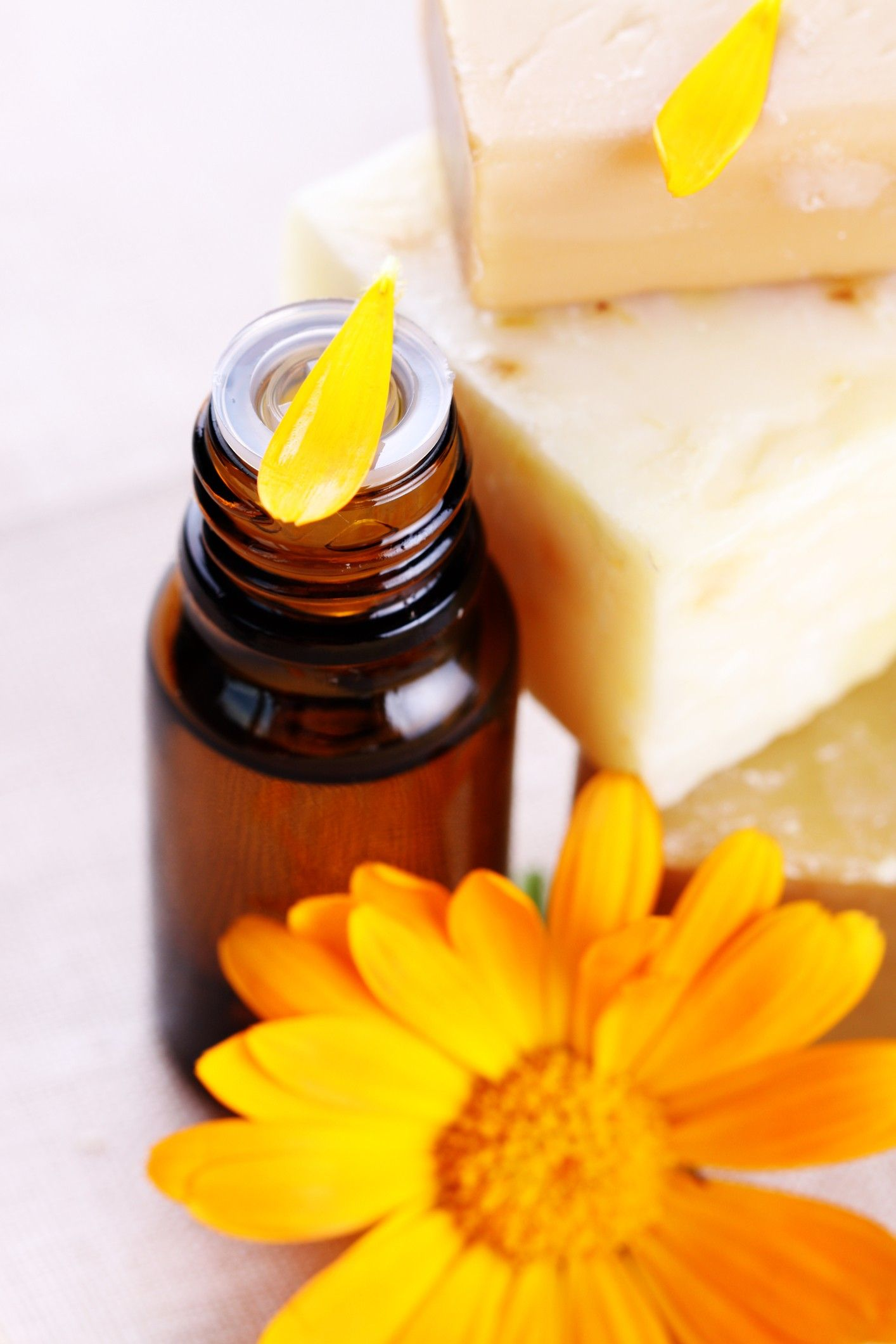 Make Calendula Oil Homemade beauty recipes, Homemade