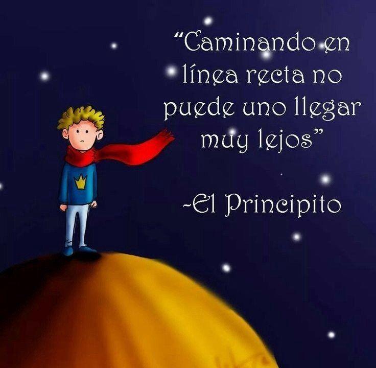 28 Frases De El Principito El Mejor Libro Para Niños Grandes Taringa Cartoon Quotes Book Quotes The Little Prince
