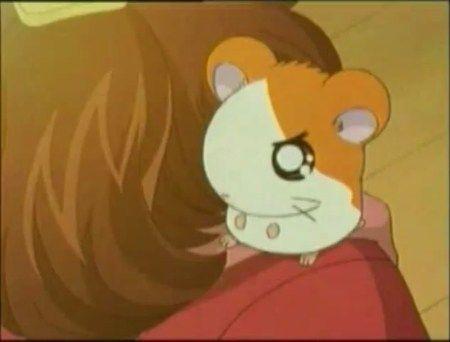 كرتون همتارو الحلقة رقم 38 اون لاين تحميل Http Eyoon Co P 12964 Pikachu Character Art