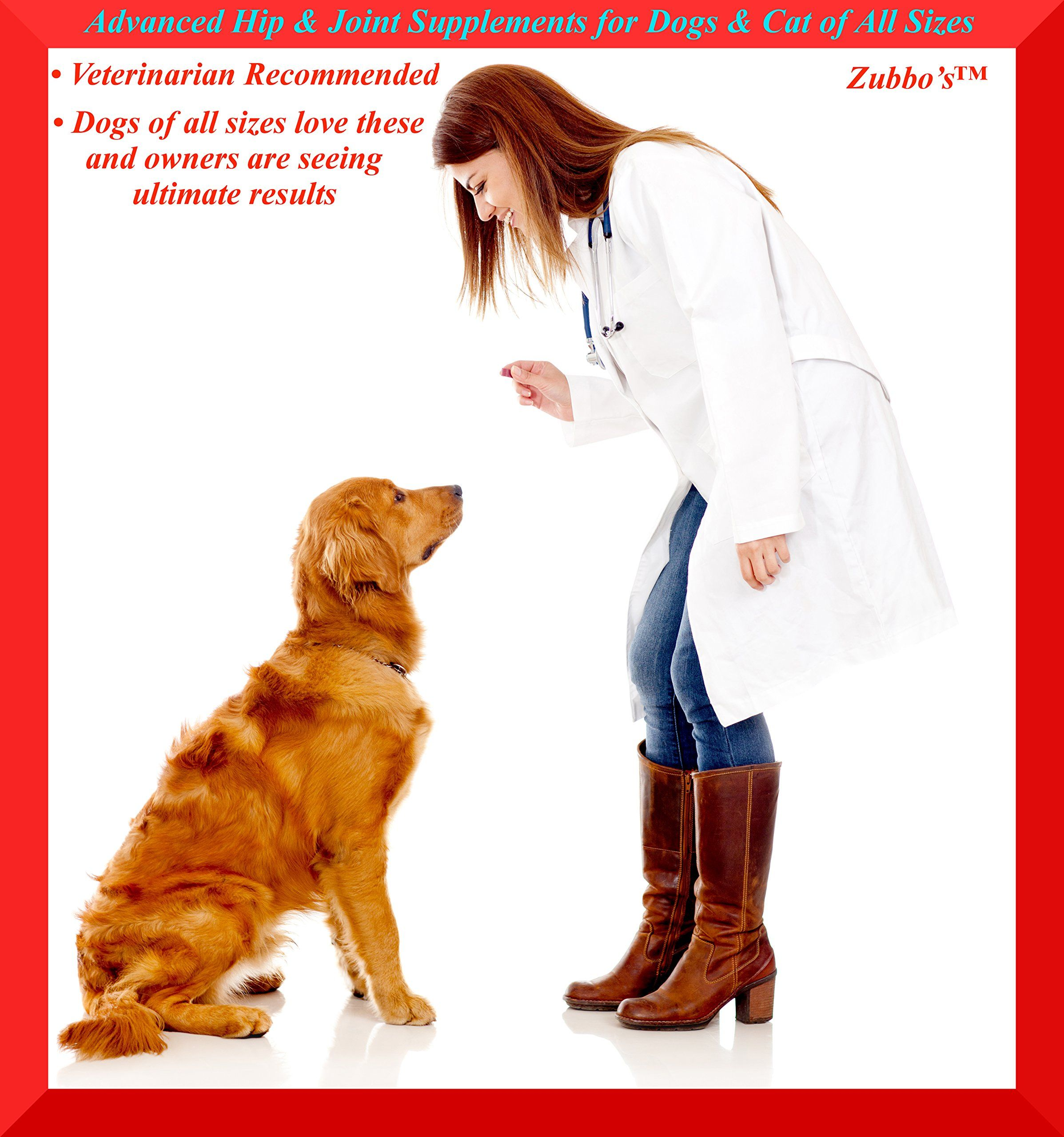 Advanced Hip and Joint Supplements for Dogs and
