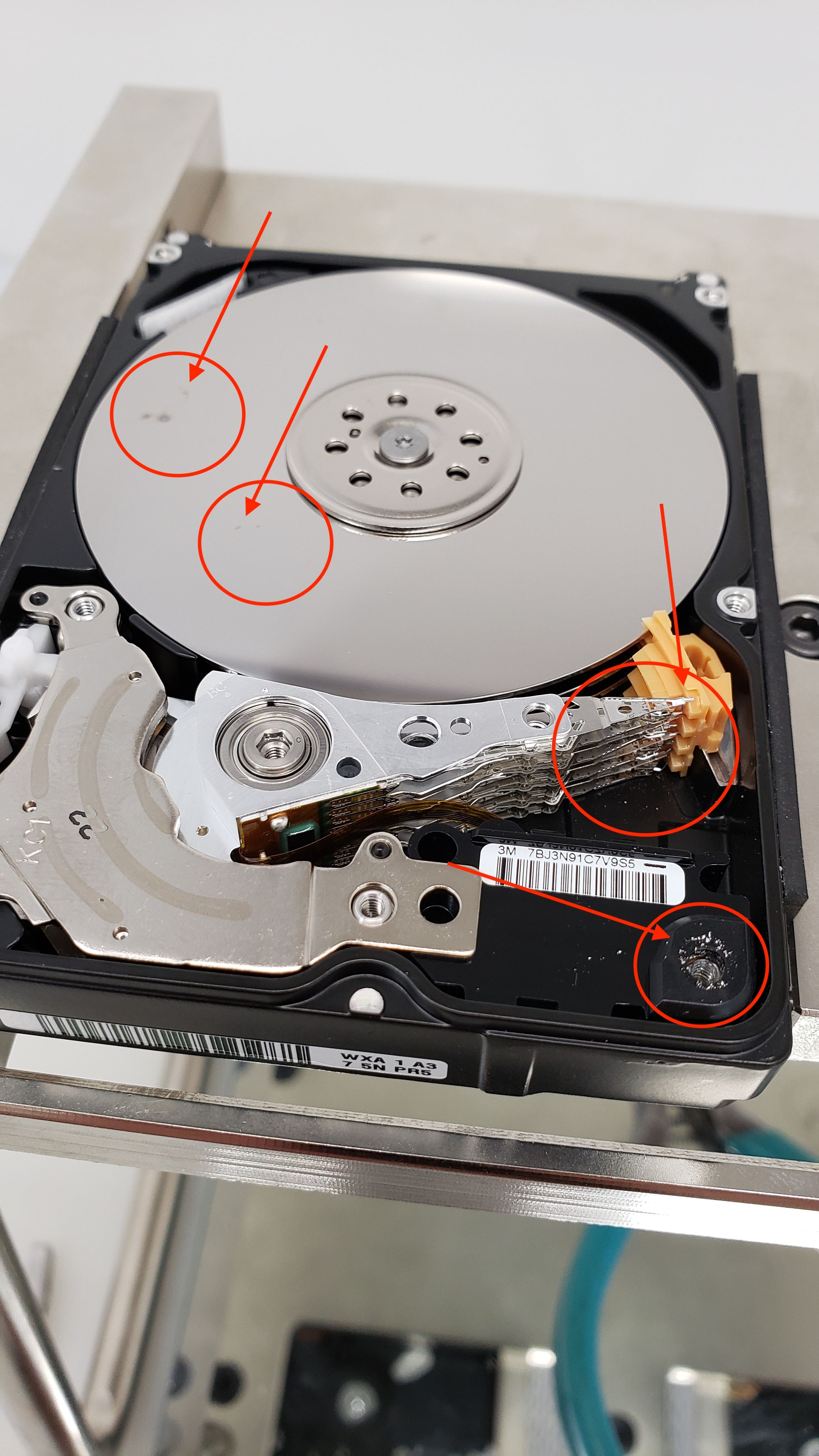 Western Digital Data Recovery Data Recovery Digital Data