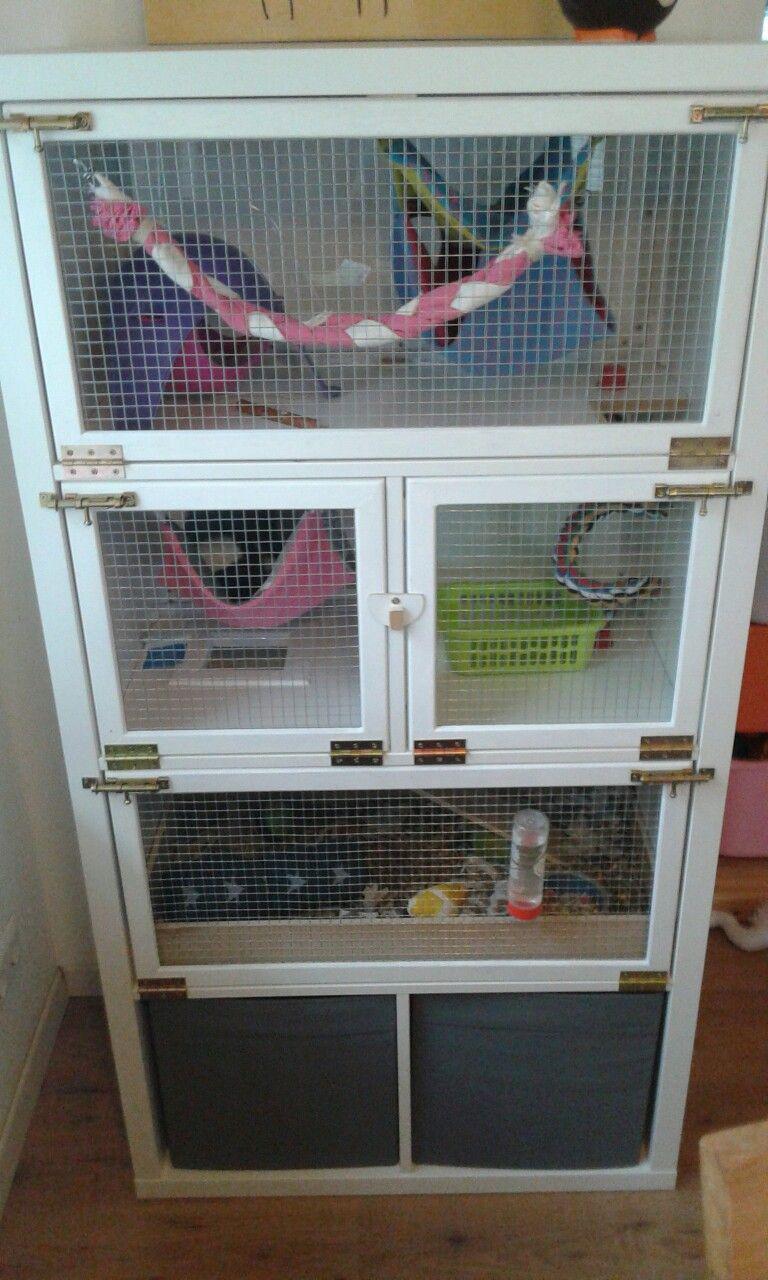 Kallax rat cage | pets | Pinterest | Rat cage, Rats and Rat house