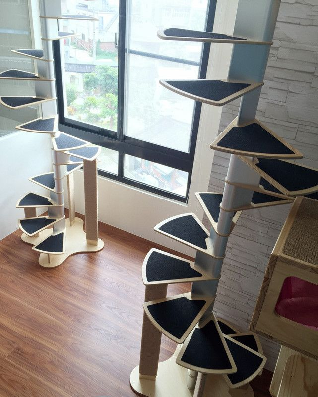 Best Pin By Shopmeoow On Climbing Cats Bookcase Stairs 400 x 300