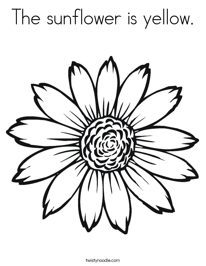 Sunflower coloring pages the sunflower is yellow coloring page