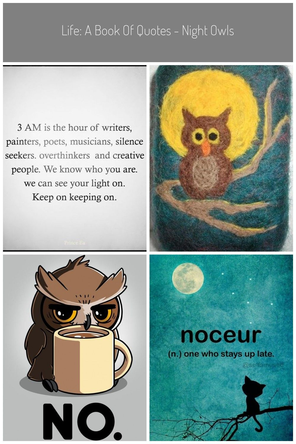 Life A Book Of Quotes Night Owls Wattpad Night Owl Life A Book Of Quotes Night Owls Owl Facts Owl Night Owl Quotes