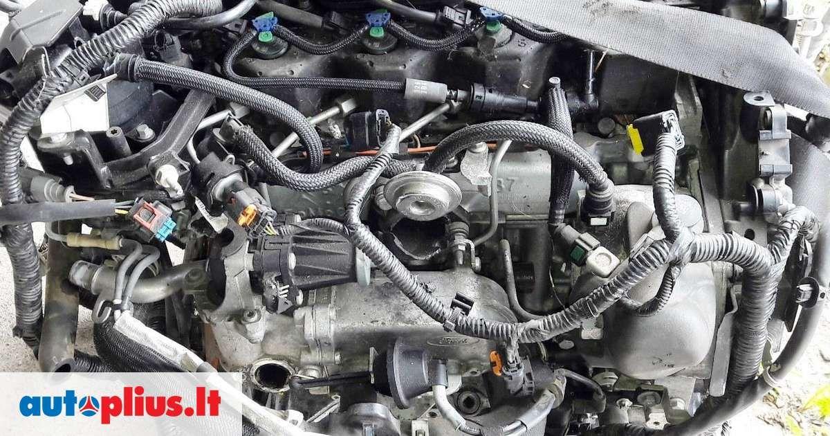 Ford Transit Tourneo Connect 1 5 Turbo Tdci Xuga Blokai Velenai