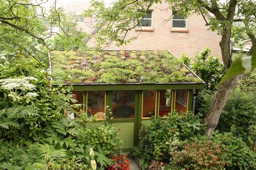 Zelf een extensief groendak maken | Pinterest - Boven slaapkamer ...