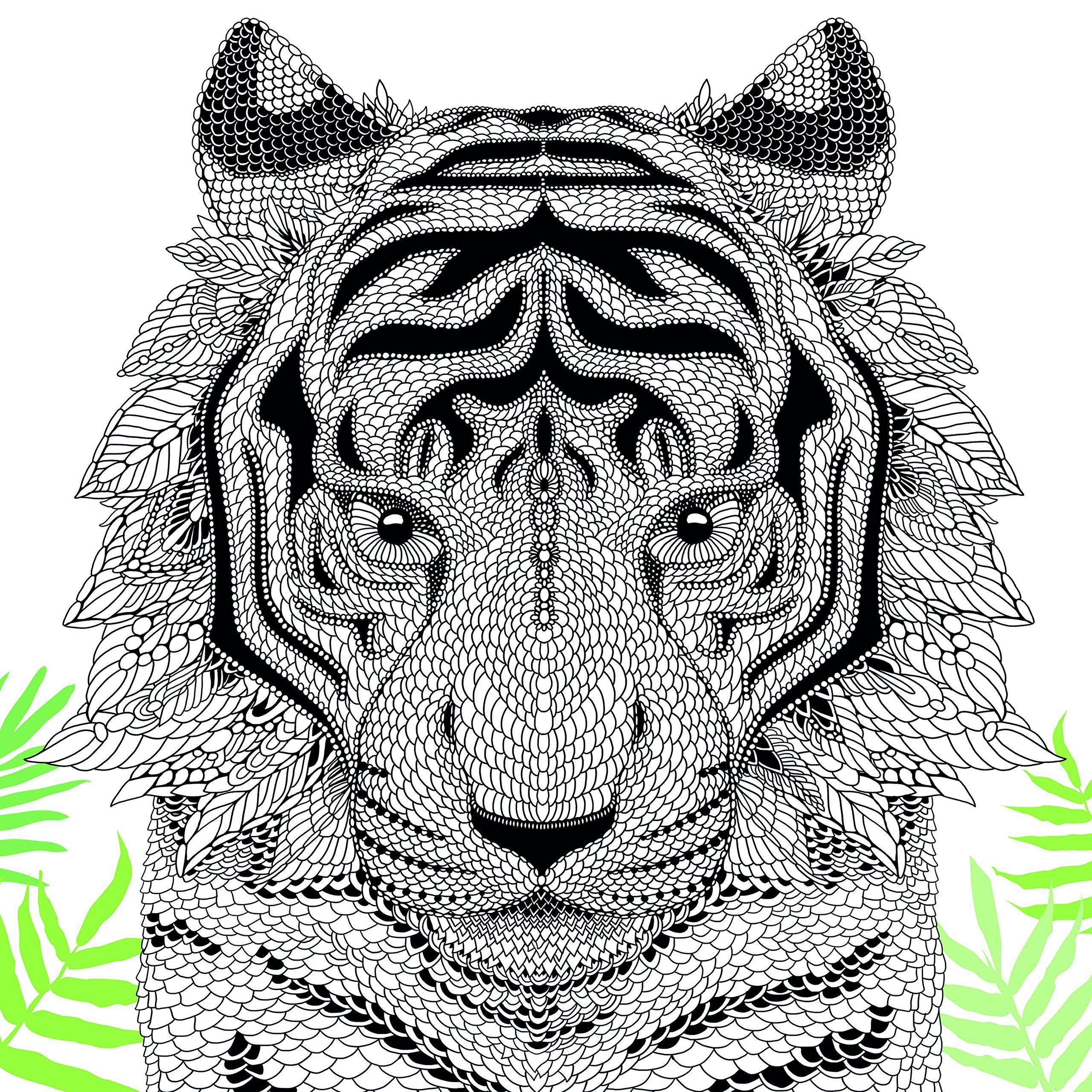 The Menagerie: Animal Portraits to Colour: Amazon.co.uk: Richard ...