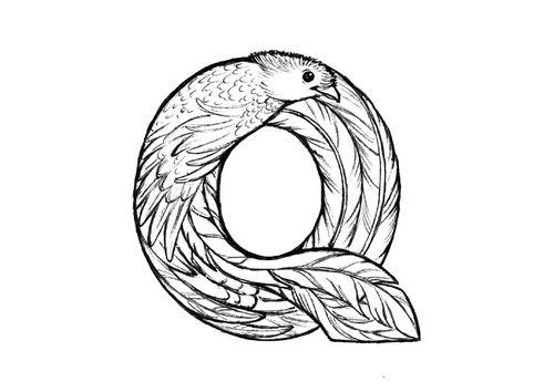 Coloring page q quetzal Pinterest