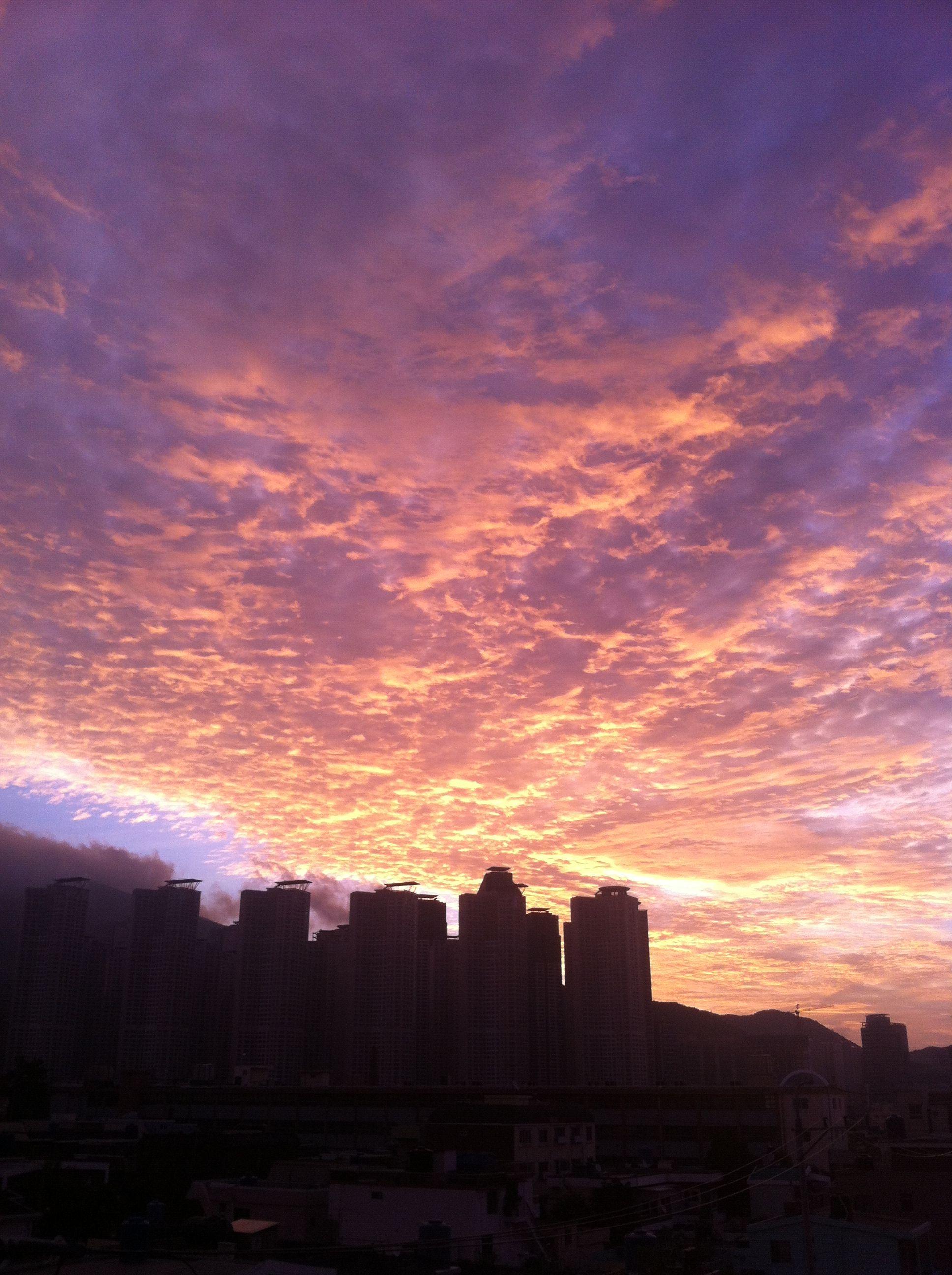 Daybreak  새벽