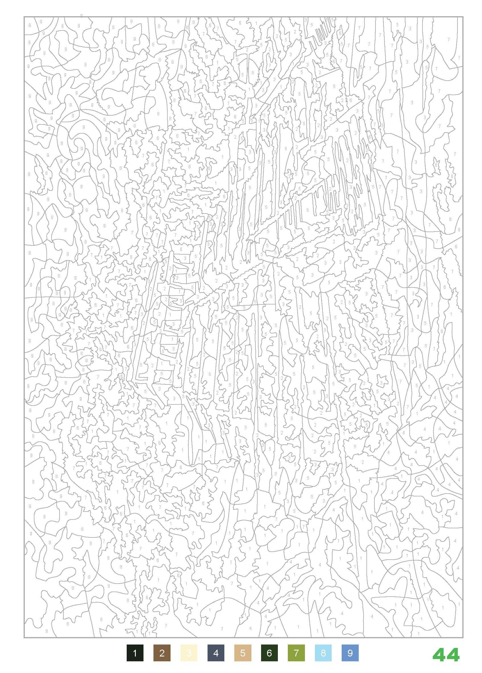 Coloriages mystères : 100 nouveaux coloriages: Amazon.de