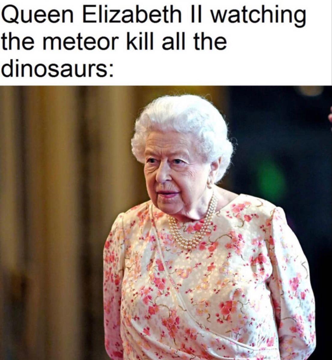 Pin By Haleigh On Queen Elizabeth Celebrity Memes Queen Elizabeth Memes Queen Elizabeth