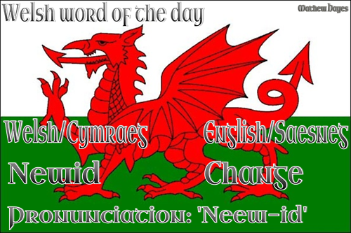 Welsh word of the day: Newid/Change
