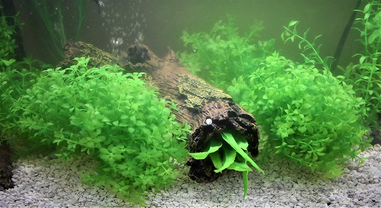 2 Piece Bundle ByTheBay Plastic Aquarium Plant Set Flexible Fish Tank Decorations