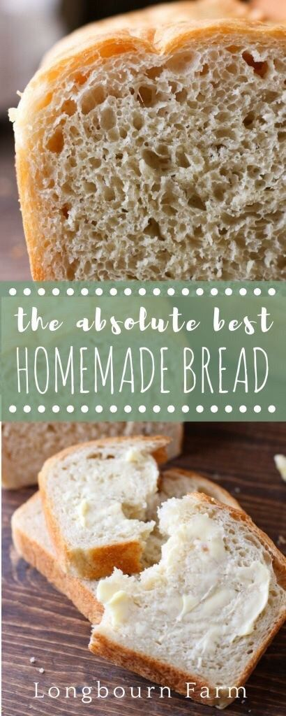 4 Ingredient Easy Artisan Bread | Recipe | Best homemade ...