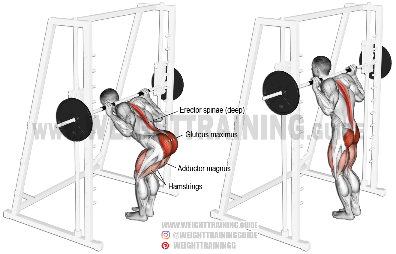 Smith Machine Bent Knee Good Morning Exercise Instructions