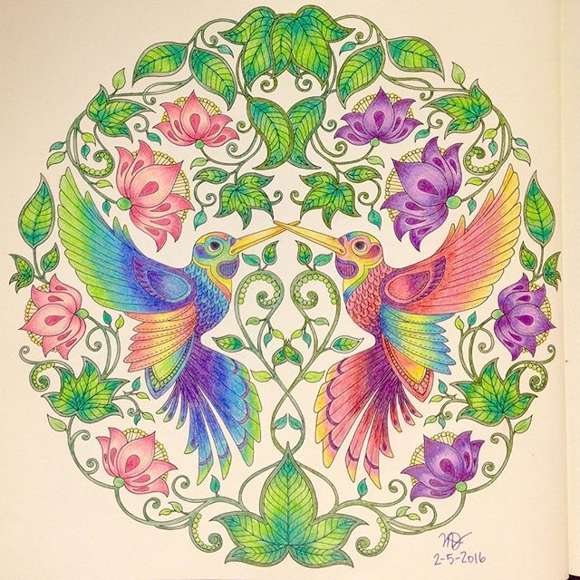 Hummingbird Coloring Pages Print For Kids Hummingbird Pictures Coloring Pages Coloring Pictures