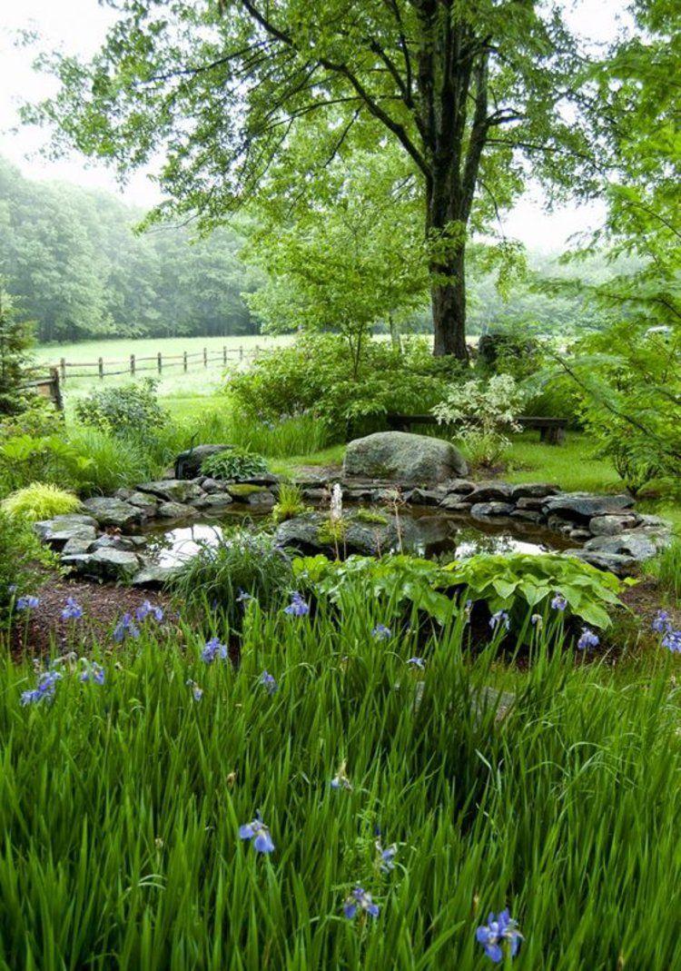 Schön Gartenteich Ideen Das Beste Von Sommer Garten Bäume Wasserpflanzen Bilder