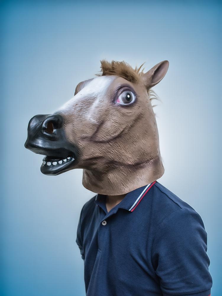 Horse Head Mask Portraiture Horse Head Mask Horses Horse Head