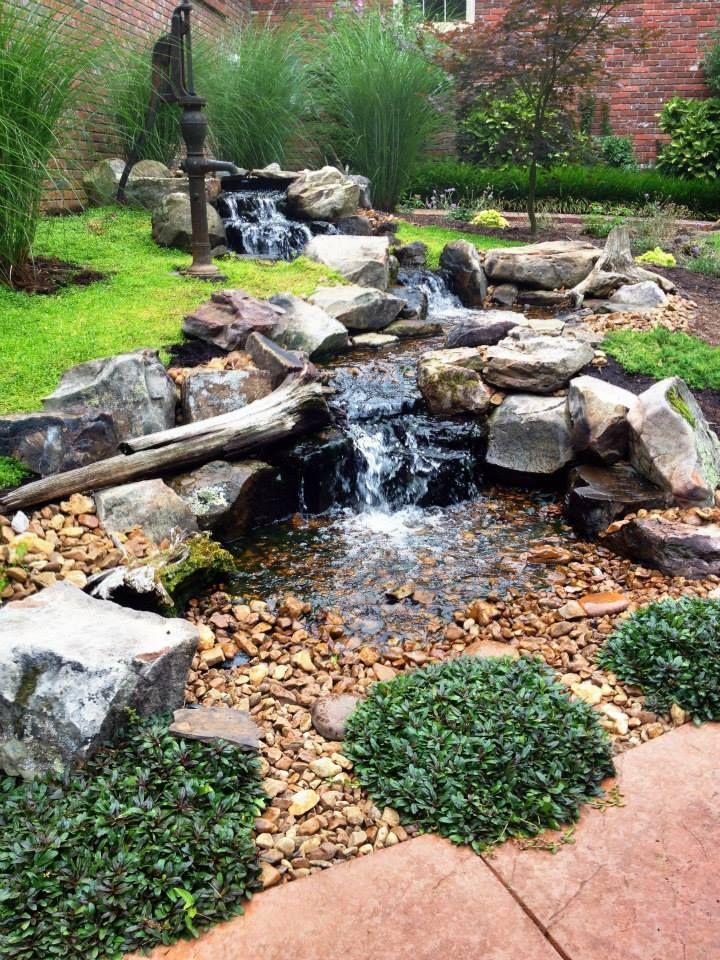 Carter S Nursery Pond And Patio Jackson Tn