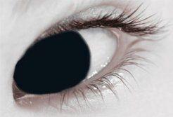 MesmerEyez XtremeEyez 1 Day Black Out Contact Lenses