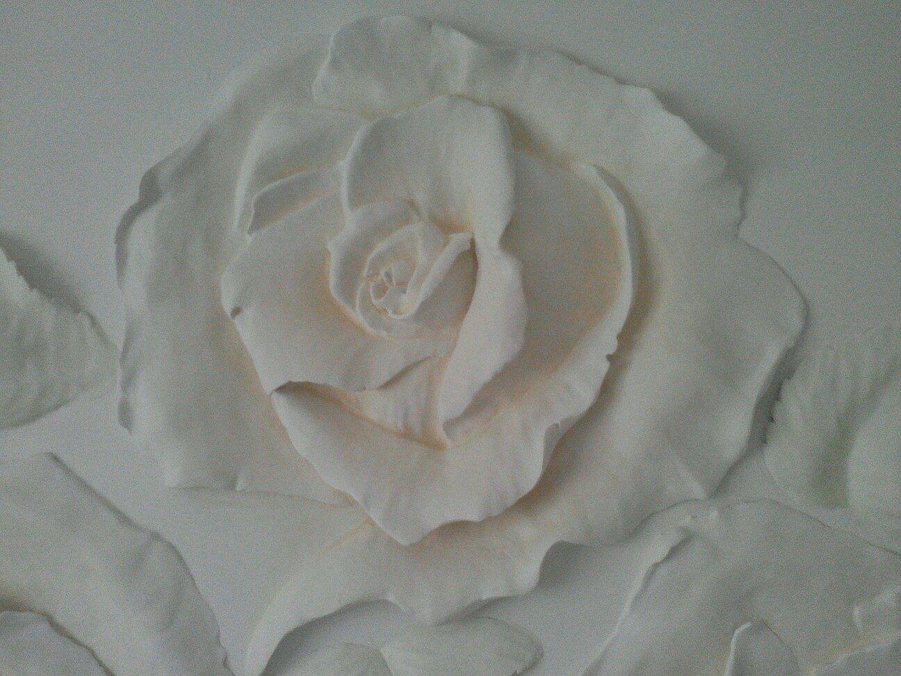 любого барельеф розы фото версия запутанности