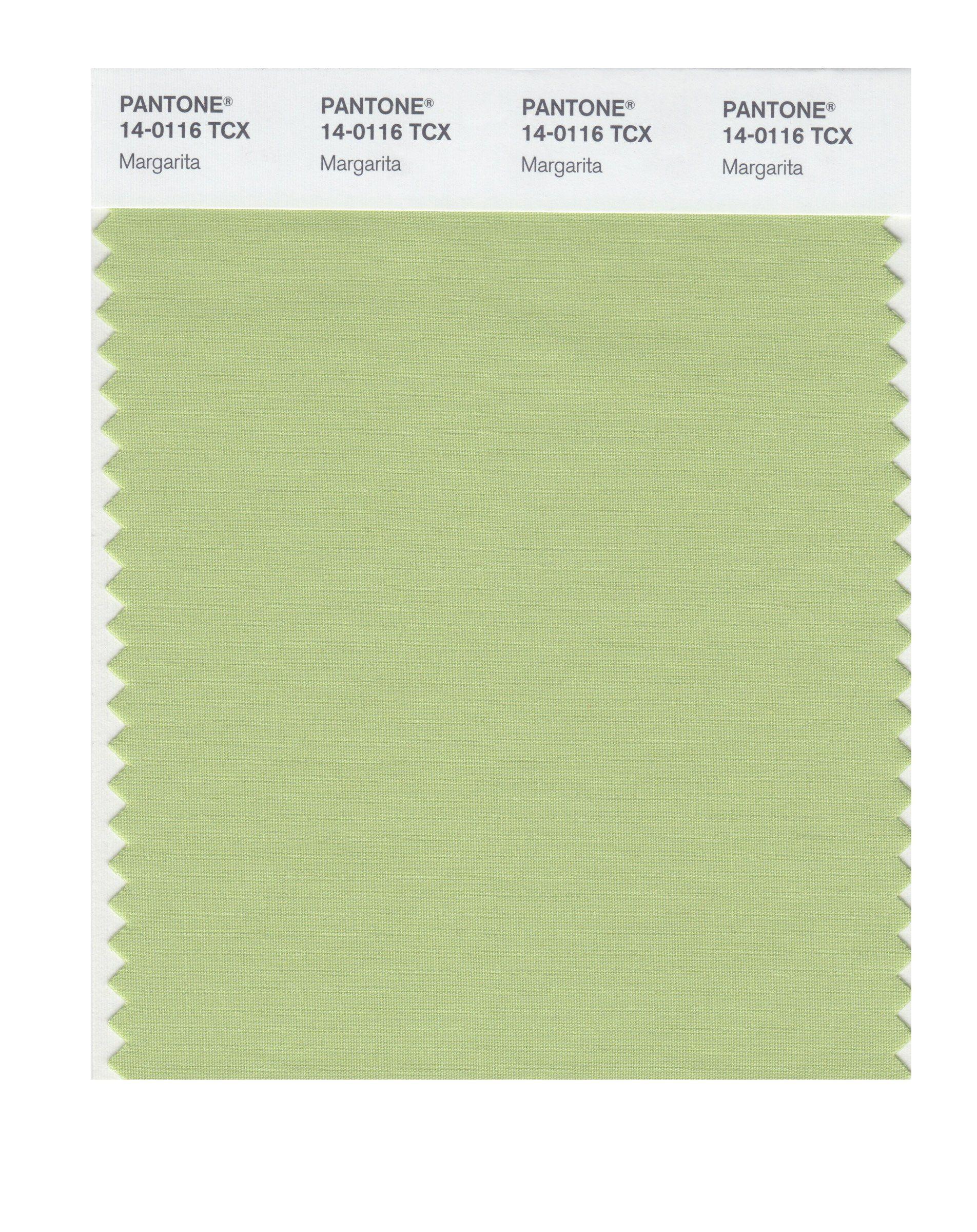 Pantone Smart Swatch 14-4310 Blue Topaz, Painting Supplies & Wall Treatments - Amazon Canada