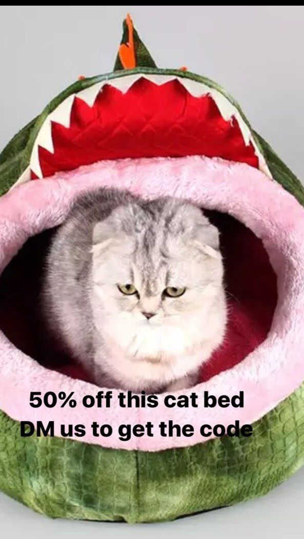 This Cat Beds Are 50 Off Just Use Sam50 Code To Get Half Plus Free Shipping Worldwide