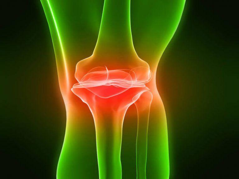 Dureri de genunchi terapie plante medicinale