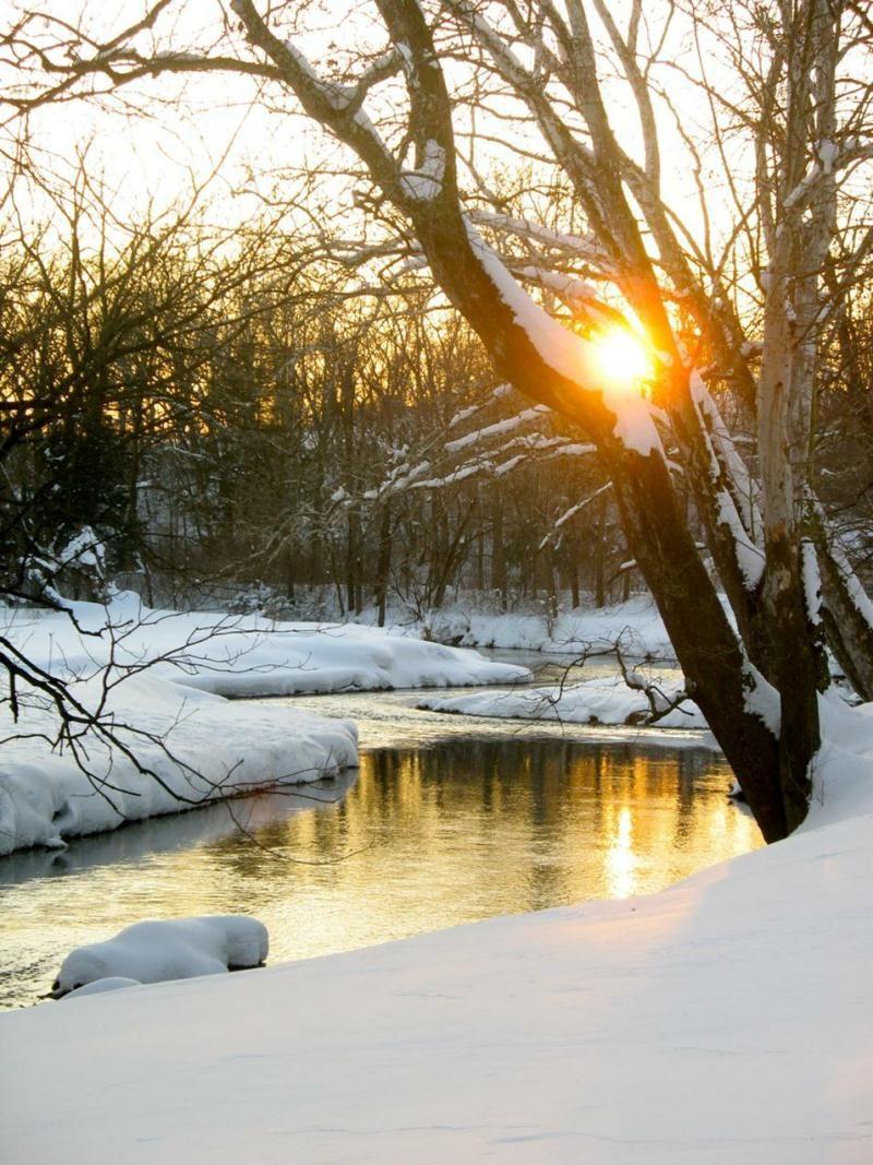 Beautiful Winter Outfit Www Pinterest Com: Peaceful Winter Scene....
