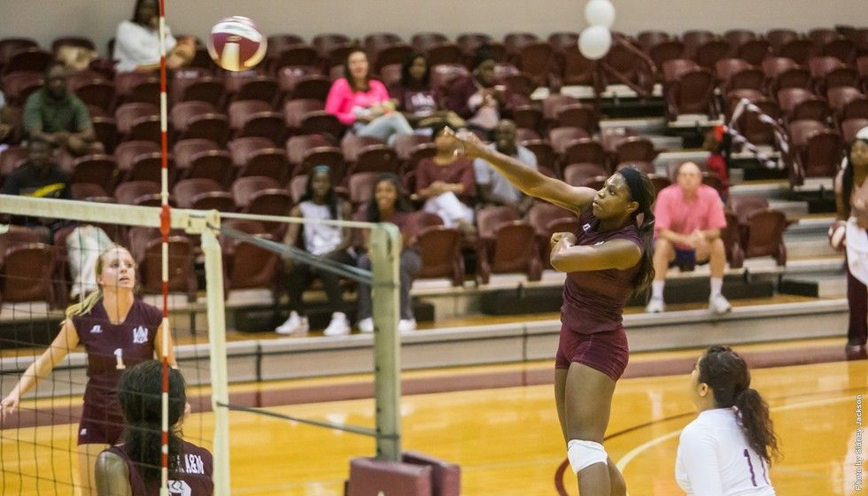 Volleyball Competed Head To Head In Maroon And White Showcase Women Volleyball Volleyball News Volleyball