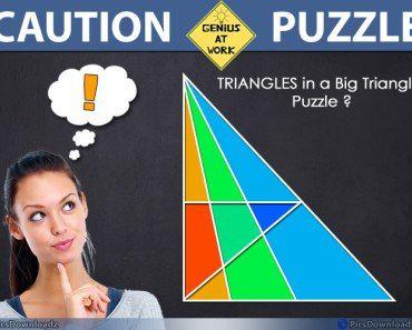 Triangle Puzzles, Genius Puzzles, Only for Genius ...