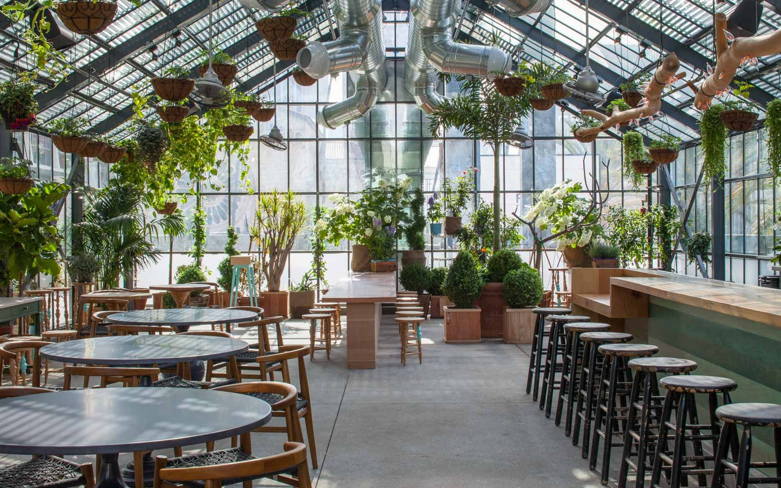 The Line Hotel Greenhouse A Beautifully Lit Interior With