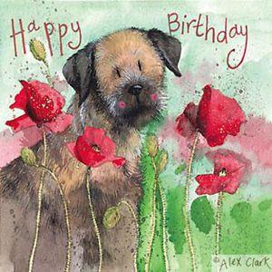 Border Terrier Birthday Card Google Sok Happy Birthday Greetings Happy Birthday Wishes Cards Happy Birthday Dog