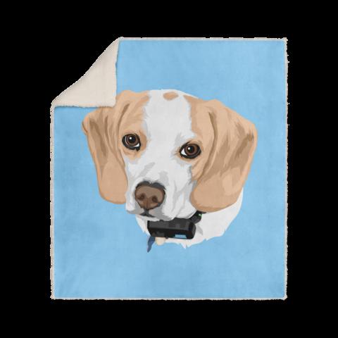 Custom Pet Fleece Blanket Animal Pillows Dog Blanket Your Pet