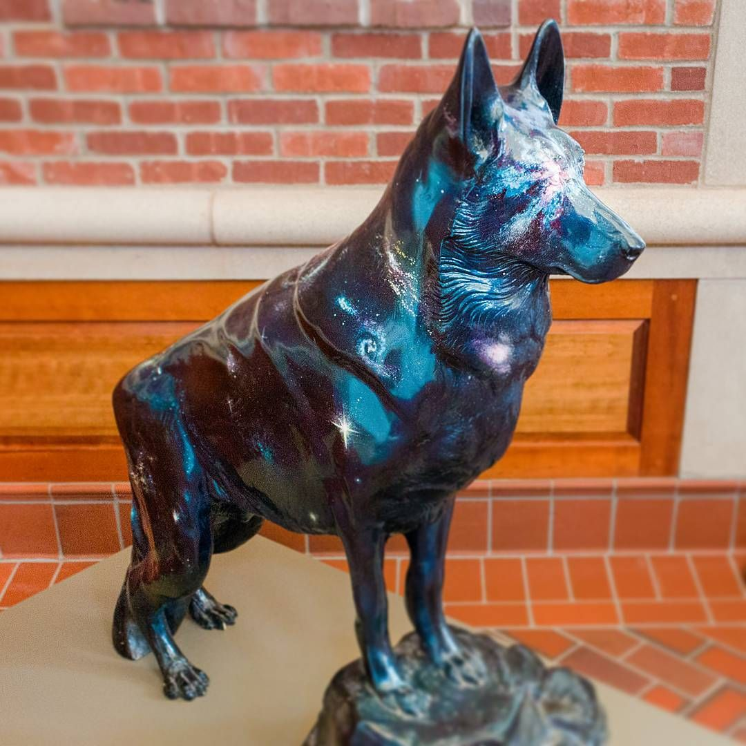 Designed By Robert L Braun The Galaxy Dog Is A Tribute To