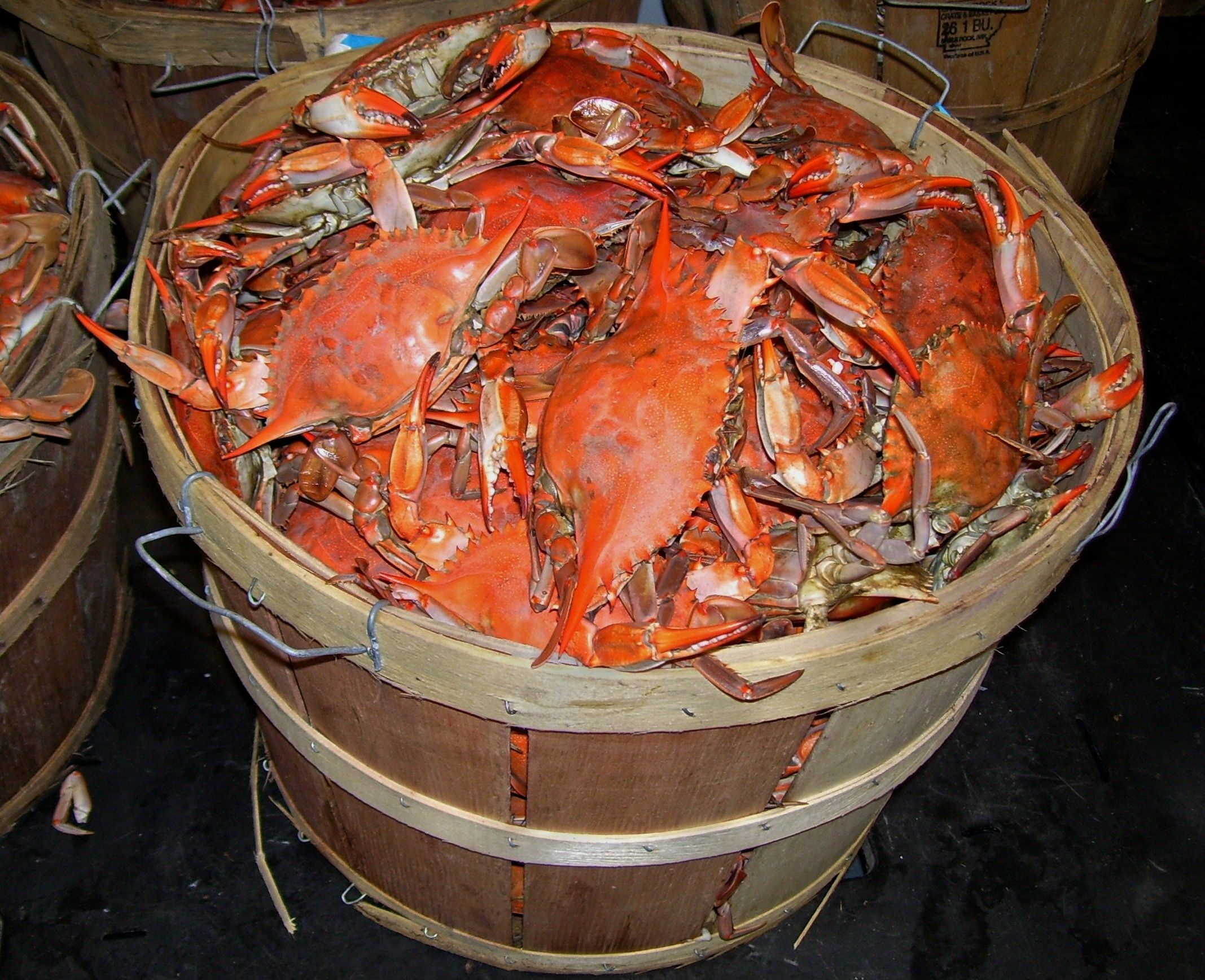 The Season Is Winding Down And The Crabs Are Plump And Sweet If You Haven T Picked Steamed Marylan With Images How To Cook Prawns How To Cook Crawfish How To Cook