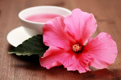 hibiscus tea, yummy!