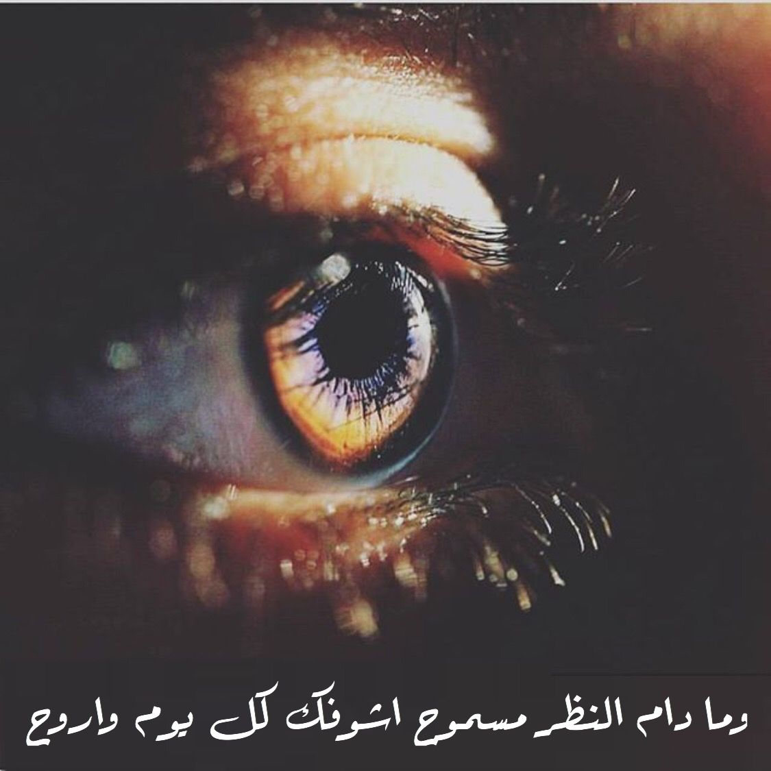 Pin By حمد البلوشي On الحب Photography Captions Beautiful Words Arabic Quotes