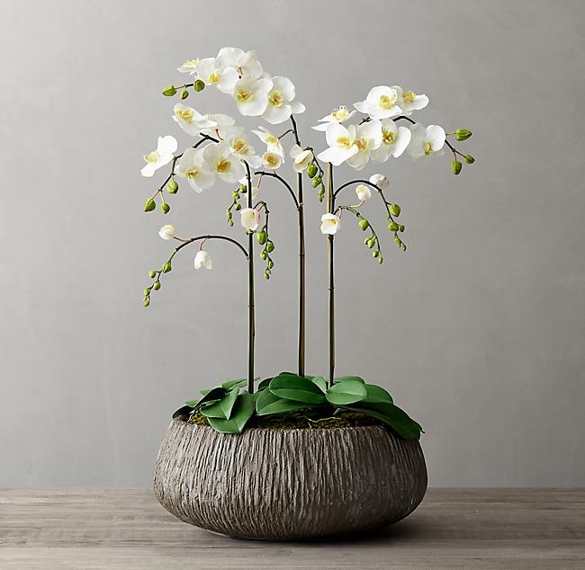 Faux Orchid Plant Carved Concrete Vessel Large Orchid Plants Concrete Bowl Faux Plants