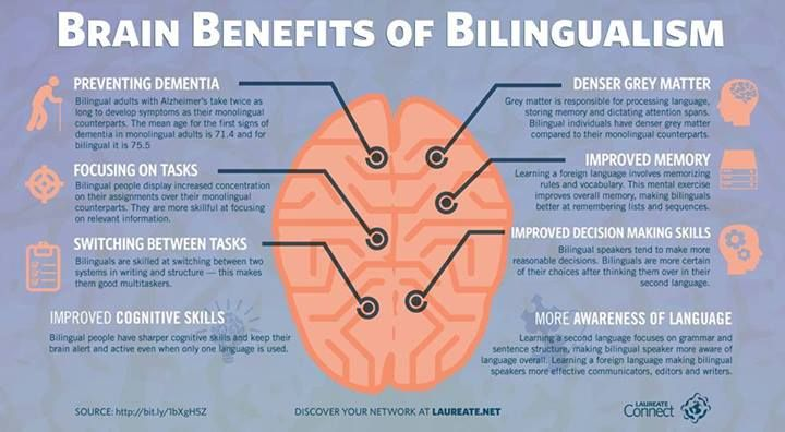 of for bilingual adults being Benefits