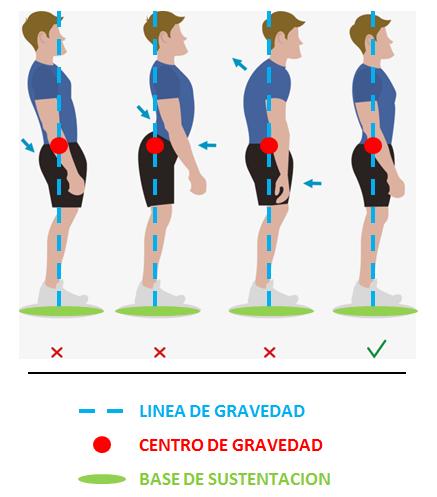 Postura corporal correcta | Posturas corporales, Posturas, Consejos para la salud