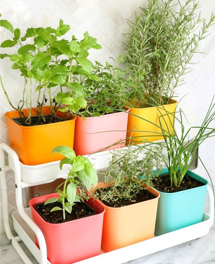 Ikea Indoor Garden: Pin By Margot Vermue On Balkon