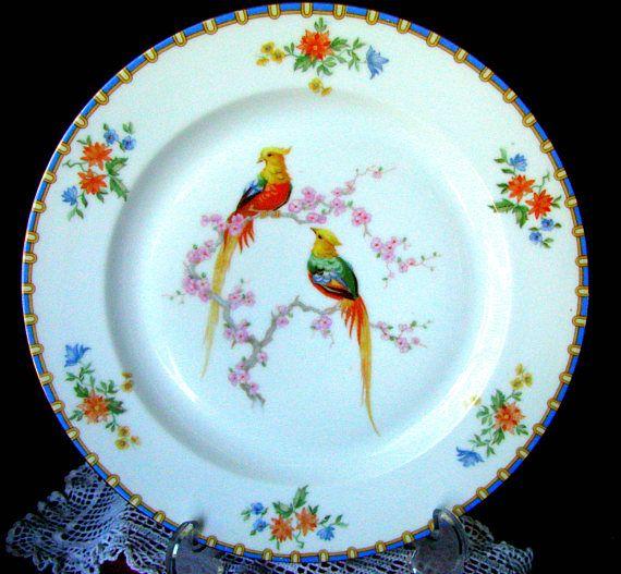 MZ Altrohlau Golden Pheasant Art Deco Victoria Pattern Dinner Plate 9 7/8 Diameter Circa  sc 1 st  Pinterest & MZ Altrohlau Victoria Czechoslovakia 9 7/8\
