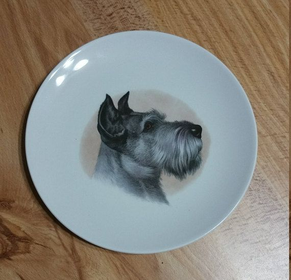 Vintage Schumann Schnauzer Dog Plate Pet Lover Gift Bavaria Arzberg Germany Panchosporch Schnauzer Dogs Gifts For Pet Lovers Pets