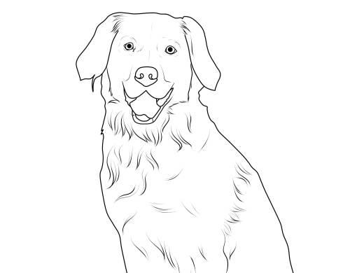 malvorlage hund labrador  christopher ochoas malvorlagen