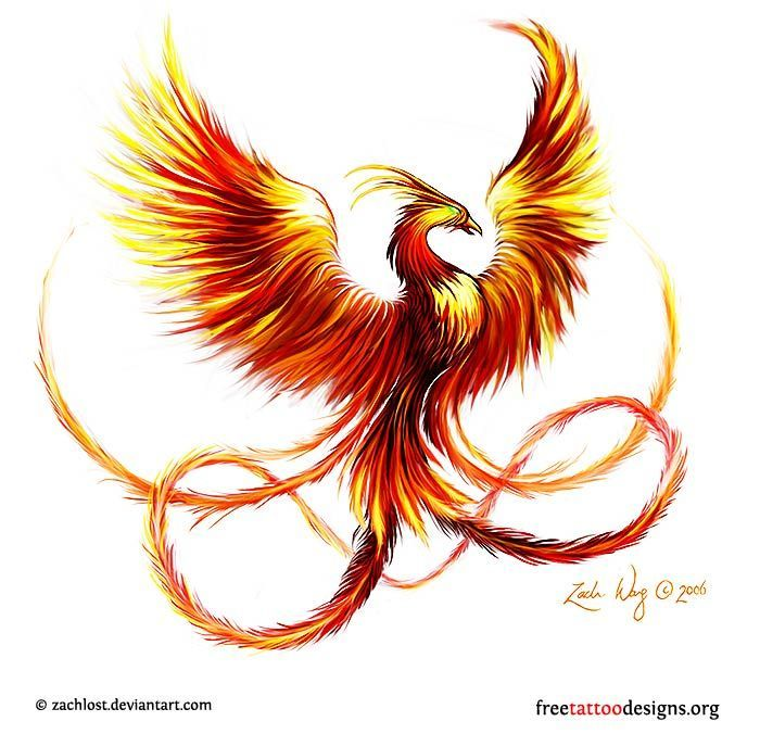 Phoenix tattoo buscar con google tattoos pinterest phoenix phoenix tattoo buscar con google voltagebd Choice Image