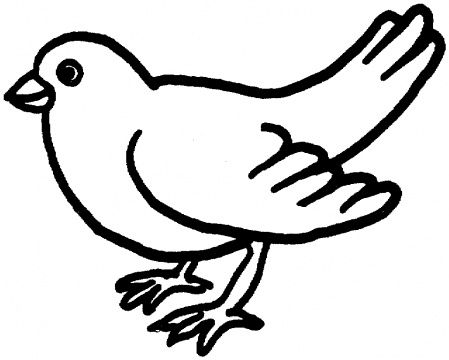 Canary Coloring Page Humming Bird Coloring Page Super Vogel