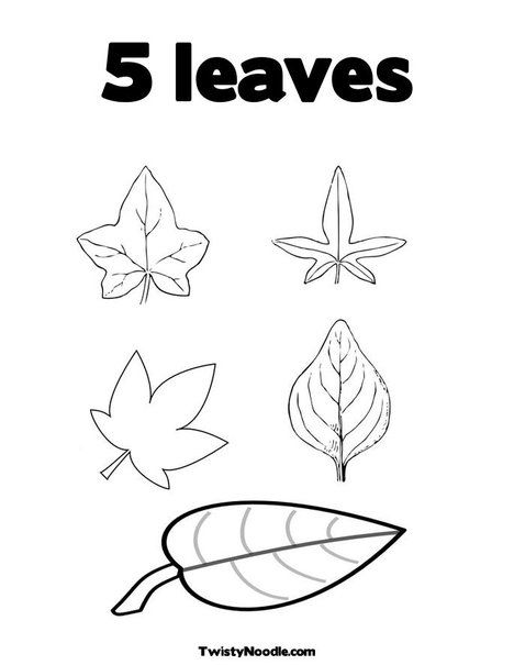 5 leaves Coloring Page - Twisty Noodle (With images ...