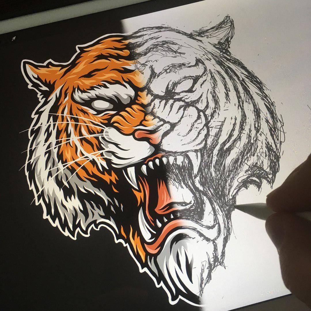 Tiger Illustration Speed Art